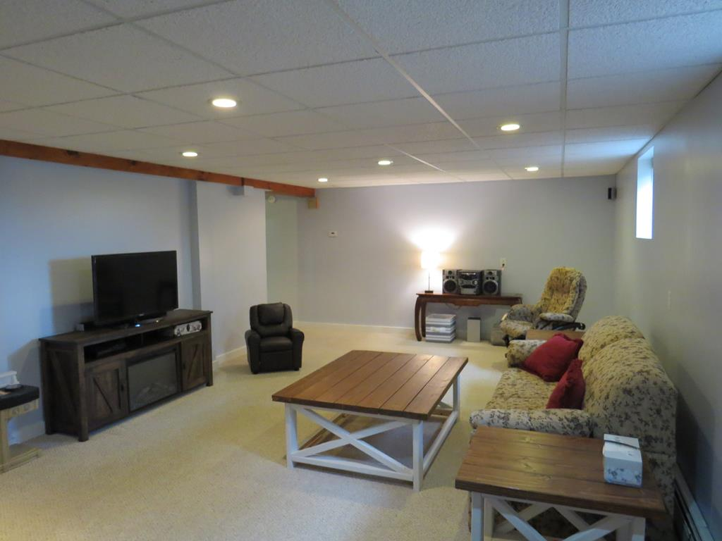 Large Finished Family Room in Basement