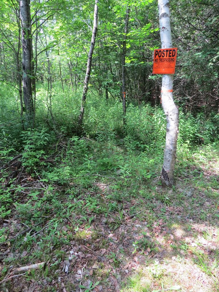 Approved Site For Septic System